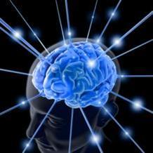 brain_chemistry